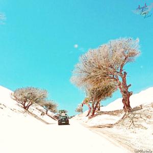 adventure life, beach road trip, Tarifa