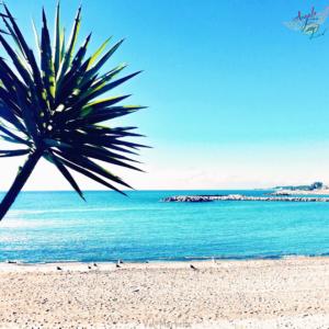 marbella beach puerto banus