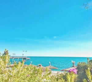 sea view, beach life, salty life