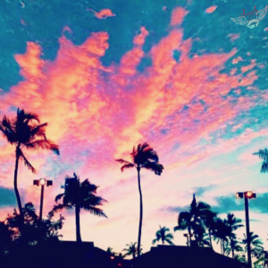 beautiful beach sunset photos marbella spain