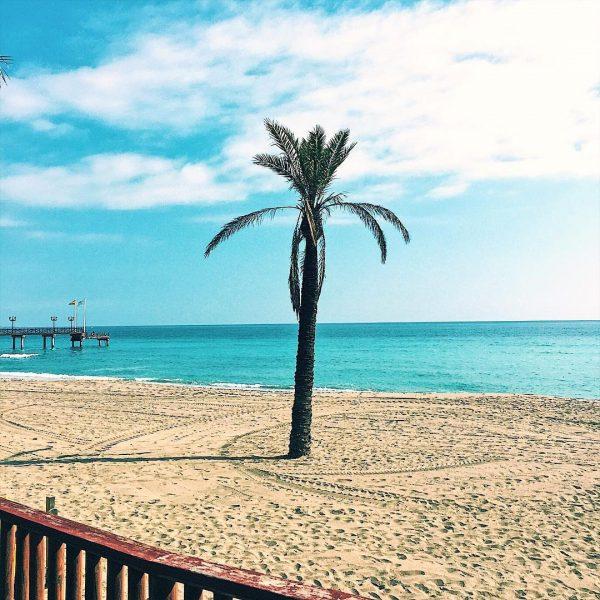 Life's a beach, Beach Vibes