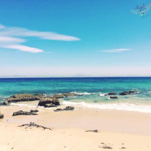 wild free beach