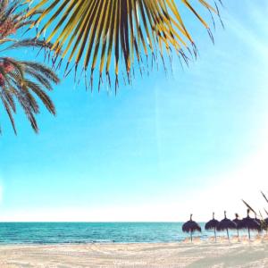 life beach, sand and beach, Costa del sol